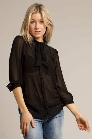Download this Sheer Black Blouse picture
